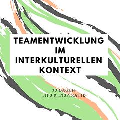 Teamentwicklung im interkulturellen Kont