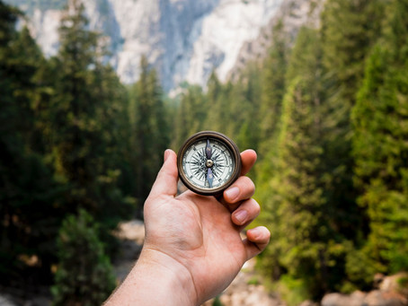 Want to Find Your Purpose? Look Backwards
