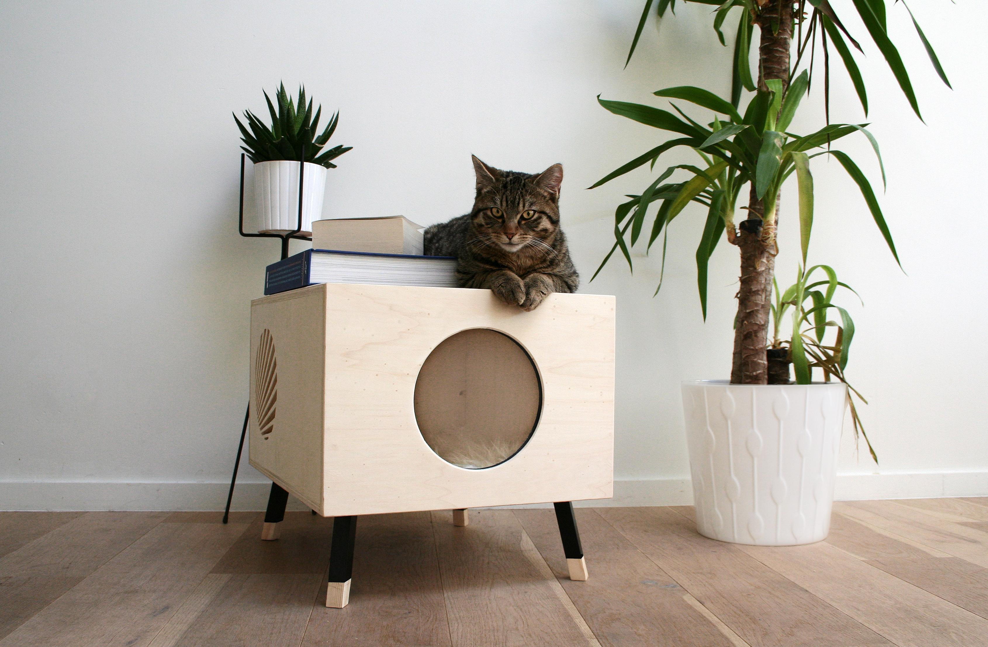 Design Voor Katten : Starters in design krab kunstletters beeldende kunst kunst