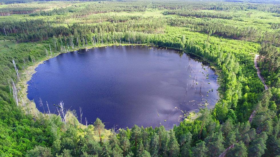 Озеро_Смердячье.jpg