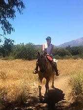 16. Exploring Ojai The Sunday Times.jpg