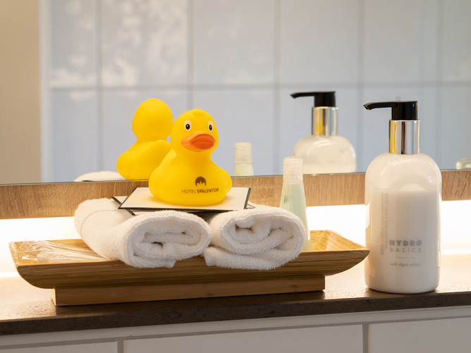 Hotel Spalentor Basel 1407 Hotel Badezimmer Hygieneartikel Hotel bathroom toiletries Hôtel
