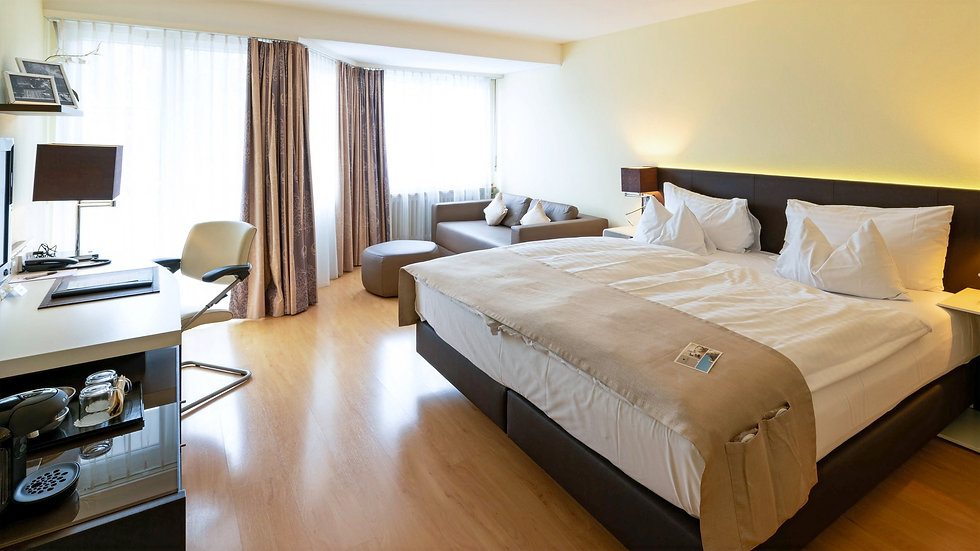 Hotel Spalentor Basel Deluxe Zimmer
