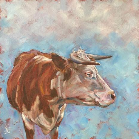 Tichborne Cow