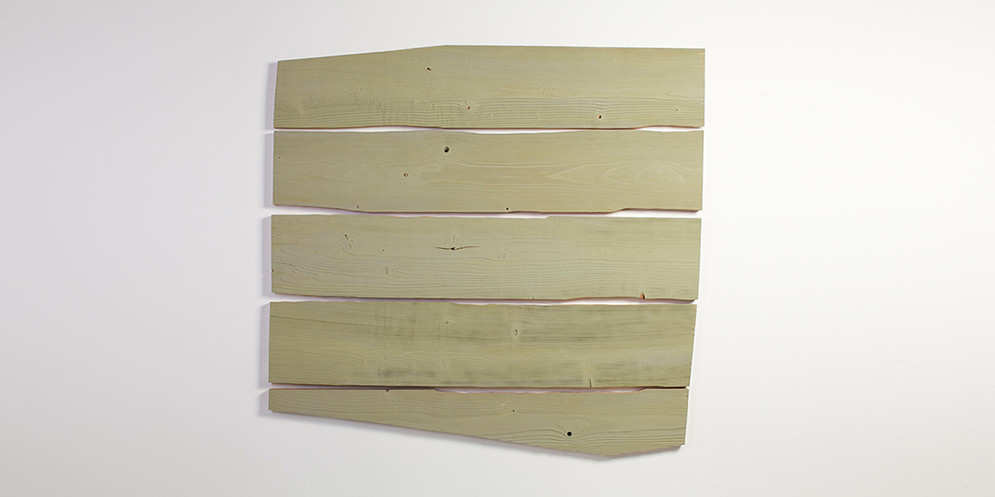 Red Cedar-Decolorized Green, 2013, acrylic and wall paint on wood, 148 x 155 cm