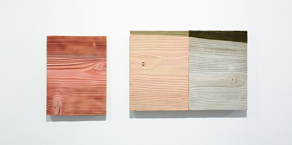 Red Cedar-Pink, 2013, acrylic on wood, 36 x 88 cm, overall
