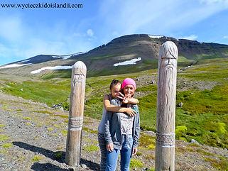 Zorganizuj własny wjazd na Islandię