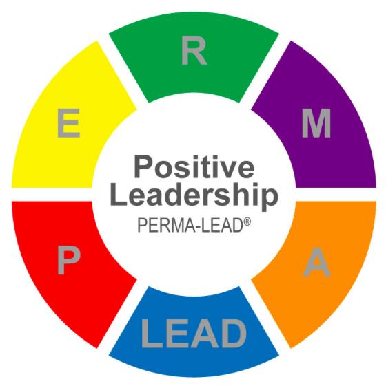 Stärkenorientierte Führung