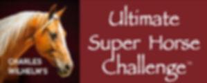 Ulitmate Super Horse Challenge