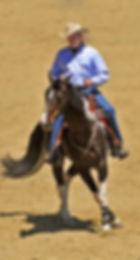 Charles Wilhelm Horse Training & Horse Tack