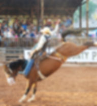 Saddle Bronc Riding Daggett County PRCA