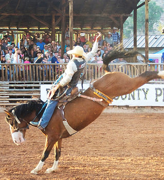 Saddle Bronc Riding Daggett County PRCA