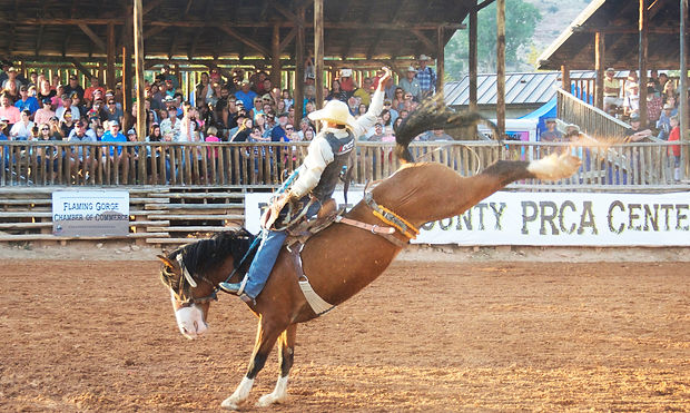 Saddle Bronc Riding 2017 Daggett County PRCA Centennia Rodeo