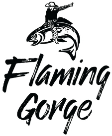 Flaming Gorge Chamber (rodeo).png