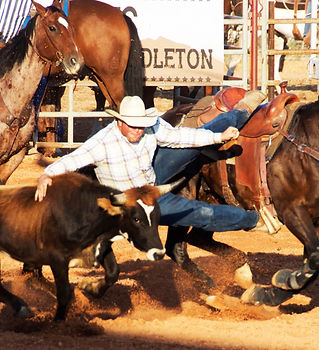 Steer Wrestling Daggett County PRCA