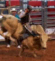 Bull Riding Daggett County PRCA