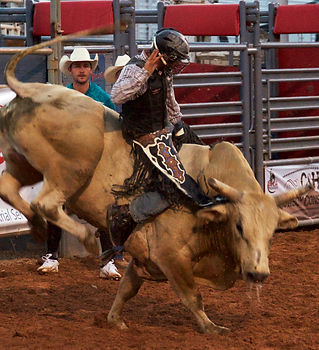 Bull Riding Daggett County PRCA
