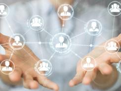 12 Netzwerkpartner