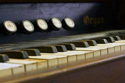 Hamilton Organ