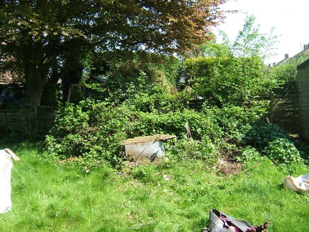 untidy garden, garden maintenance, overgrown, gardening, garden design, selling a house, buying a property, outside room, outdoor space, attracting a buyer,