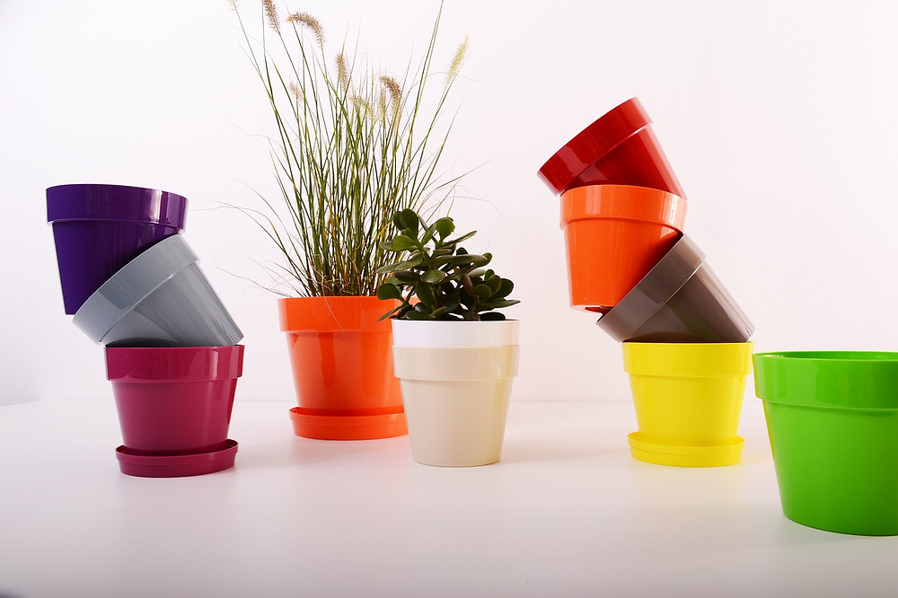 colourful flower pots with plants