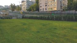 yeşil alan