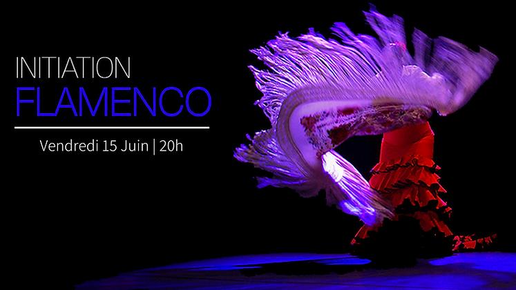 Workshop Flamenco- Membres
