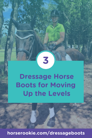 Guest Articles for Horse Rookie