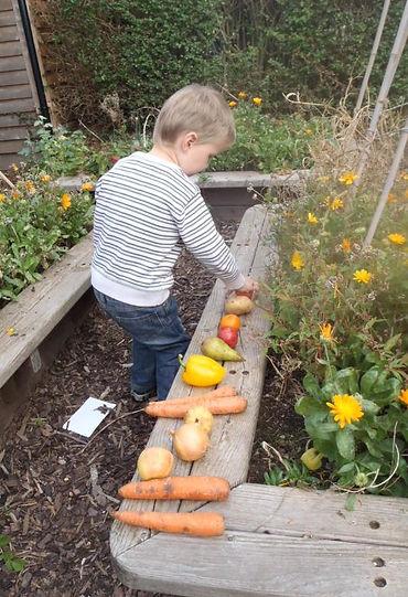 garden veg.JPG