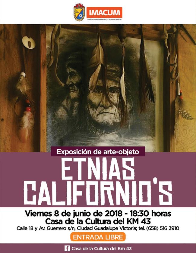 """""""Convoca Casa de la Cultura a Exposición de Arte Objeto del KM. 43"""""""
