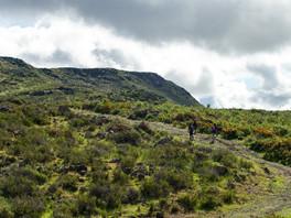 Baja California cuanta con oferta de turismo de aventura y naturaleza
