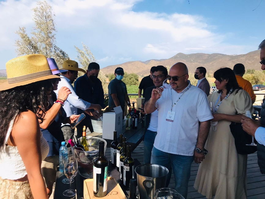 Vinos de Baja California fueron reconocidos por enólogos nacionales e internacionales