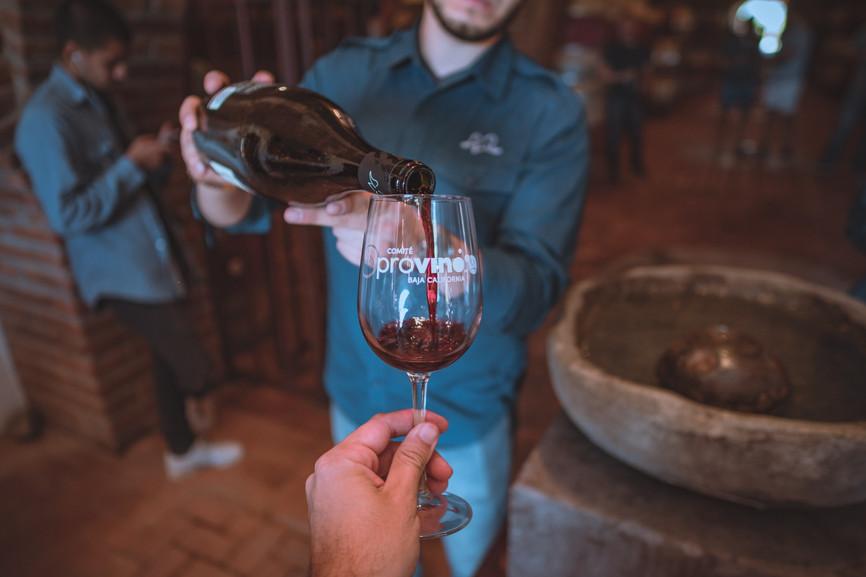 Visita las Rutas del Vino de BC como experto