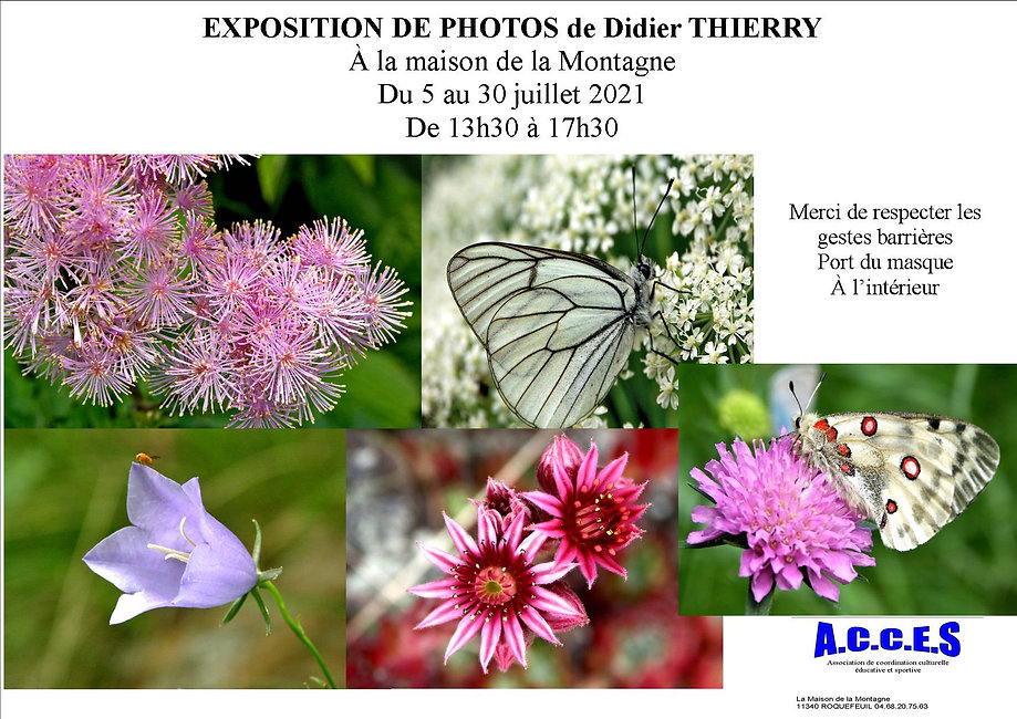 Exposition photos Didier Thierry.jpg