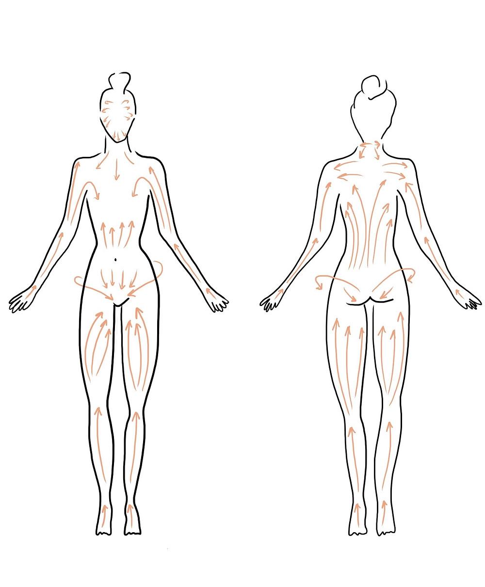 brossage à sec (brossage lymphatique)