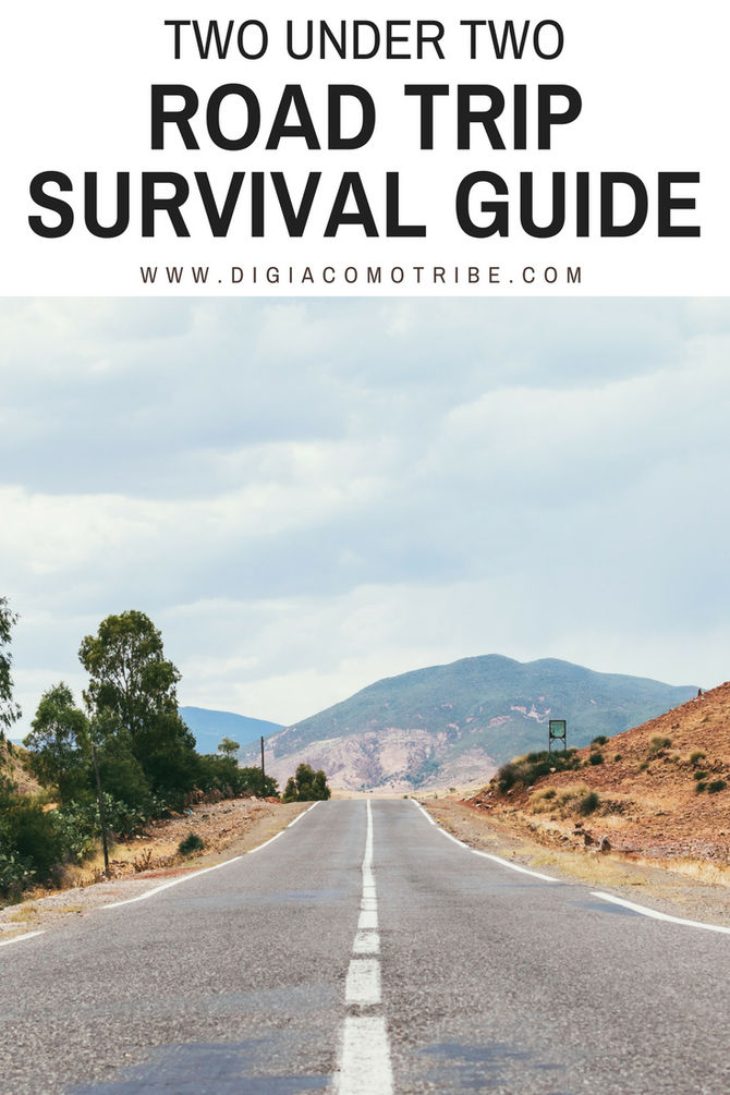 Two Under Two- Road Trip Survival Guide