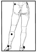 Fig 5.jpg