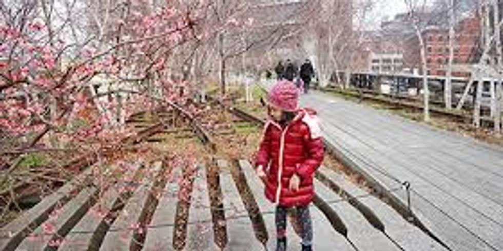 Tour Highline per bambini 6-12 anni