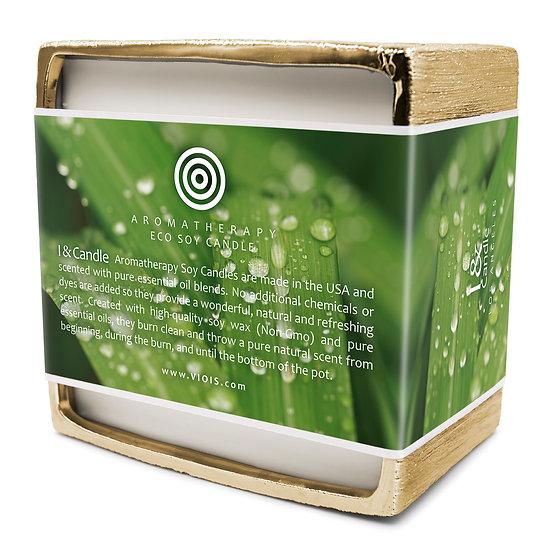 Big Pot 50 oz. Citronella & Lemongrass Aromatherapy Eco Soy Candle (5-Wick)