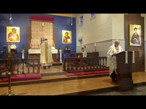 Video of Instructional Mass