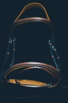 The Flash Bridle