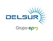 Logo - DELSUR - Color - Vertical - Endos