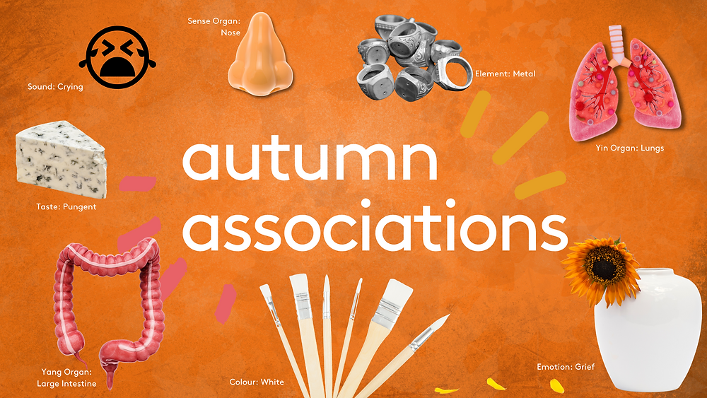 Autumn associations in Traditional Chinese Medicine