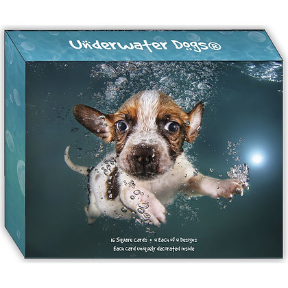 Underwater Dogs - Assorted Greeting Cards Box of 16