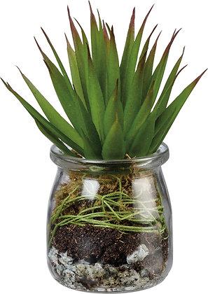 Primitives by Kathy Jar - Aloe Succulent