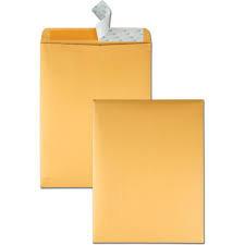 Redi-Strip Catalog Envelope, #13 1/2, Cheese Blade Flap, Redi-Strip Closure, 100