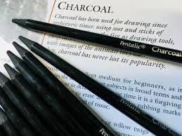 Pentalic Woodless Charcoal Pencils
