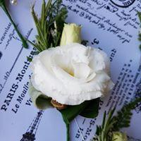 buttonholes 4.jpg