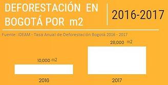 DEFORESTACION_BOGOTA.jpg