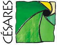 cesares2015.jpg